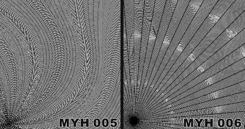 MYH 005 / MYH 006